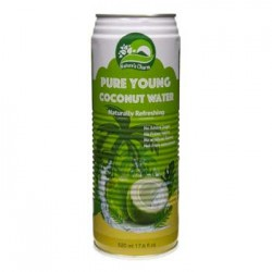 Agua de Côco 100% Natural Nature s Charm 520ml 1un
